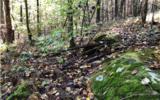37+AC Mountaintown Trail - Photo 15
