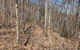 LOT16 Overlook At Yh - Photo 3