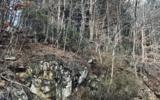 3LOTS Pine Ridge - Photo 18