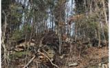 3LOTS Pine Ridge - Photo 19