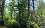LOT 6 White Pine Ridge - Photo 1