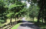 135 Shiloh Ridge - Photo 10