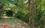 LT 23 Bear Paw Lane - Photo 1