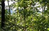 Laurel Ridge - Photo 1