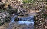 348 Hemlock Trail - Photo 1