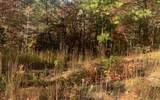 LT3 Chimney Ridge - Photo 11