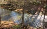 LT 49 Fires Creek Cove - Photo 11