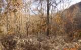 LT 1 Lories Mountain Rd - Photo 1