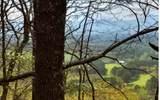 54 Misty Ridge Cove - Photo 1