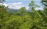 10 Eagle Fork Overlook - Photo 2