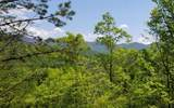 10 Eagle Fork Overlook - Photo 3