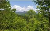 10 Eagle Fork Overlook - Photo 7