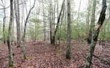 LT3 Enchanted Woods - Photo 1