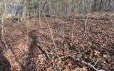 LOT12 Hickory Ridge - Photo 1