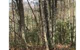 LOT 9 Bunny Trail - Photo 1