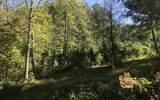 LOT 1 Pinehurst - Photo 1