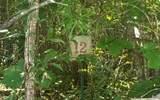 LT 12 Brookhaven Lane - Photo 1