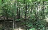 LOT36 Wolf Mnt Estates - Photo 1