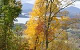 73-M Mountain Harbour - Photo 1
