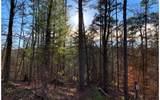 1684 Shade Tree - Photo 1