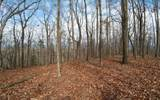 14.2A Teel Mountain Lane - Photo 3