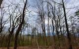 Hickory Ridge Dr - Photo 1