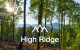 LT 10 High Ridge - Photo 3