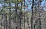 152 Lonesome Pine Trail - Photo 13