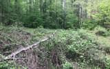 00 Burnt Mountain Road - Photo 12
