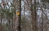 21 N Ridge High Meadows - Photo 29