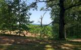 7085 Candy Mountain Rd - Photo 59