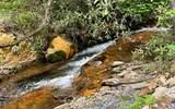 1089 Creekside Dr - Photo 1