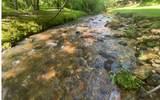 316 Pigeon Creek Road - Photo 33