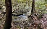 LT-3 Shearer Creek Dr - Photo 12