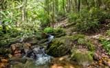 365 Parker Trail - Photo 2