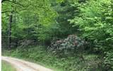 LT 2A Crabapple Road - Photo 14