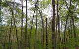 0 Whispering Pine - Photo 5