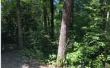 Lot 5 & 5A River Rid - Photo 1