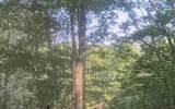 307 Pigeon Creek - Photo 6