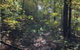 37+AC Mountaintown Trail - Photo 10