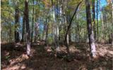37+AC Mountaintown Trail - Photo 11