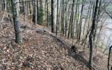 3LOTS Pine Ridge - Photo 3