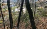 3LOTS Pine Ridge - Photo 5
