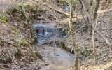 LT 10 Bear Paw Trail - Photo 1