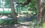 2321 Fodder Creek Rd - Photo 7