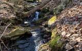 LT205 Stone Cliff Drive - Photo 7