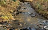 1449 Muskrat Creek Road - Photo 1