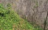 LT27A Trillium Heights - Photo 19