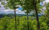 485 Blue Ridge Heights - Photo 61