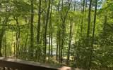 92 Hidden Pines Trail - Photo 16